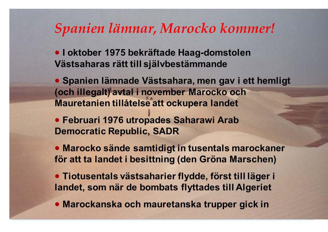 Spanien lämnar, Marocko kommer!  I oktober 1975 bekräftade Haag-domstolen Västsaharas rätt till självbestämmande  Spanien lämnade Västsahara, men ga