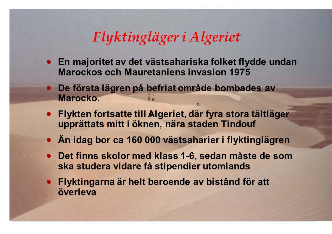 Flyktingläger i Algeriet  En majoritet av det västsahariska folket flydde undan Marockos och Mauretaniens invasion 1975  De första lägren på befriat