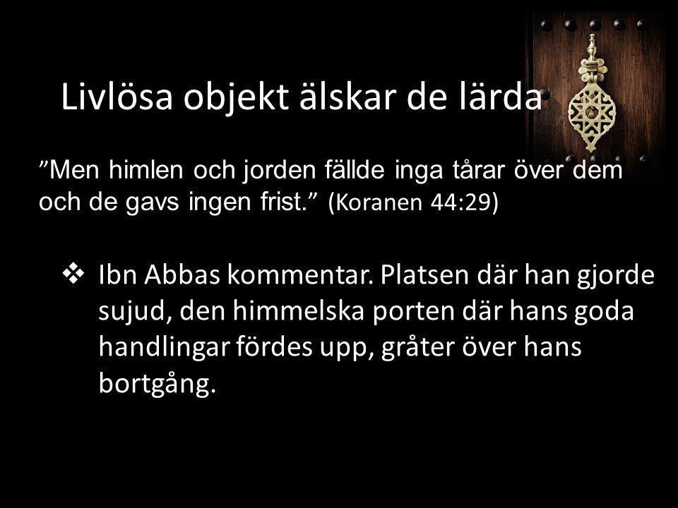  Ibn Abbas kommentar. Platsen där han gjorde sujud, den himmelska porten där hans goda handlingar fördes upp, gråter över hans bortgång. Livlösa obje