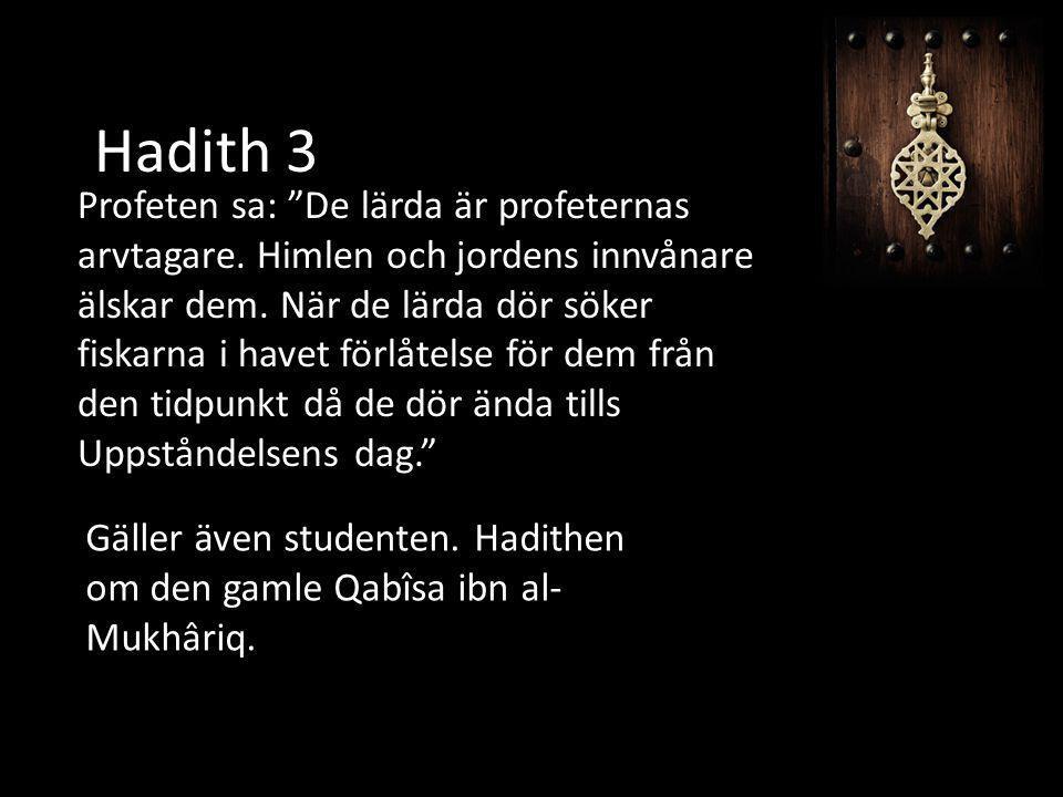 """Hadith 3 Profeten sa: """"De lärda är profeternas arvtagare. Himlen och jordens innvånare älskar dem. När de lärda dör söker fiskarna i havet förlåtelse"""