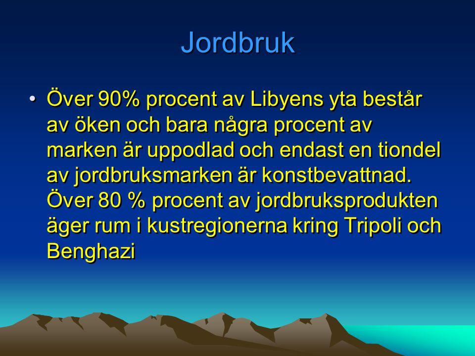 Jordbruk •Över 90% procent av Libyens yta består av öken och bara några procent av marken är uppodlad och endast en tiondel av jordbruksmarken är kons