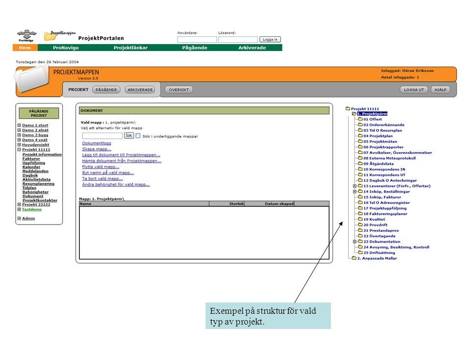 Exempel på struktur för vald typ av projekt.