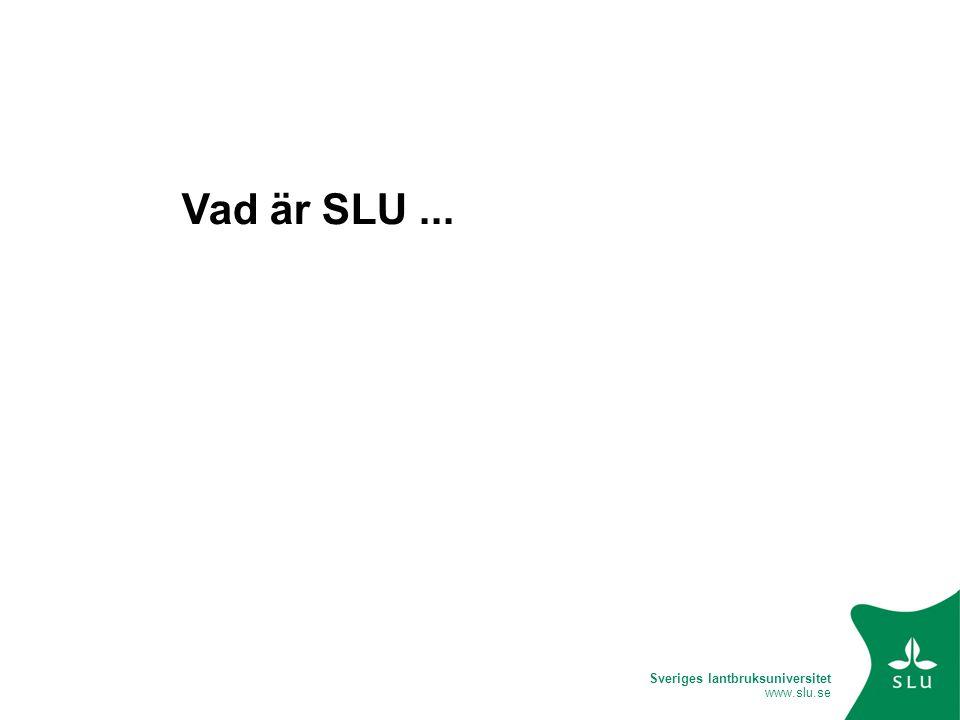 Sveriges lantbruksuniversitet www.slu.se Inmatning User Area Redigering Editorial Review Publicerat Repository Från inmatning till publicering: Bibliotekarie Student eller annan ansvarig Publikation i pdf-format