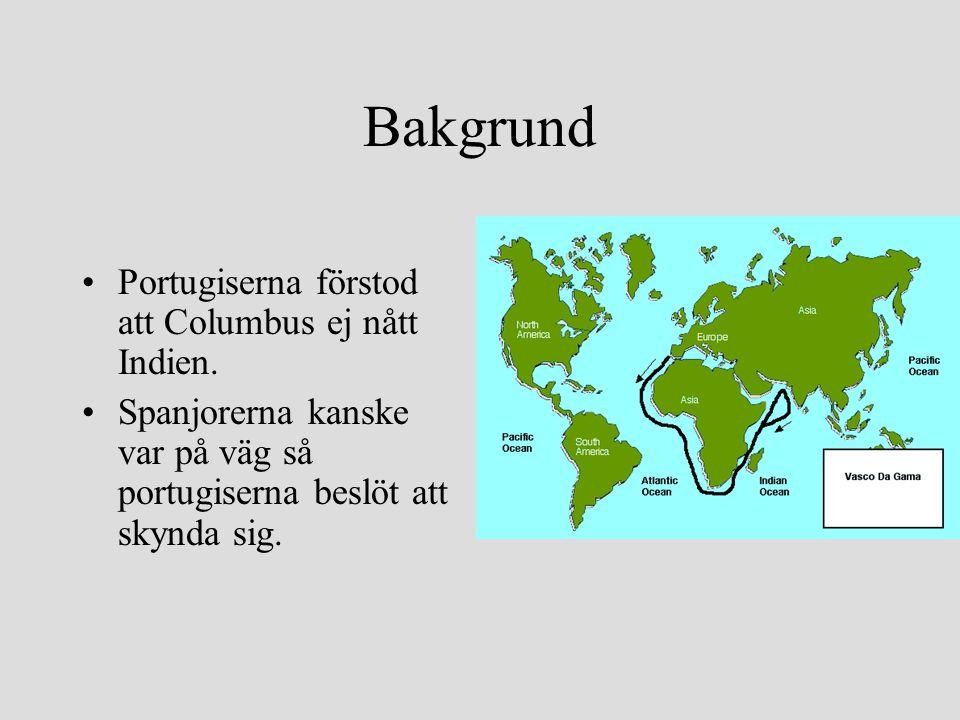 Bakgrund •Portugiserna förstod att Columbus ej nått Indien. •Spanjorerna kanske var på väg så portugiserna beslöt att skynda sig.