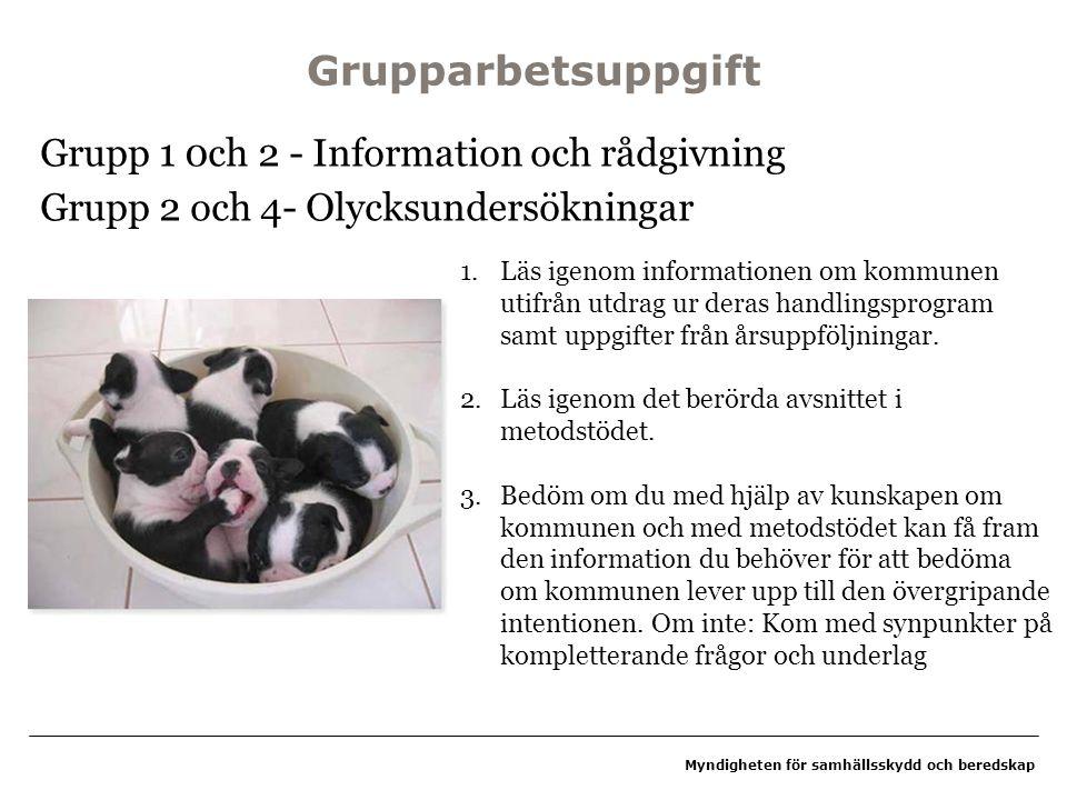 Myndigheten för samhällsskydd och beredskap Grupparbetsuppgift Grupp 1 0ch 2 - Information och rådgivning Grupp 2 och 4- Olycksundersökningar 1.Läs ig