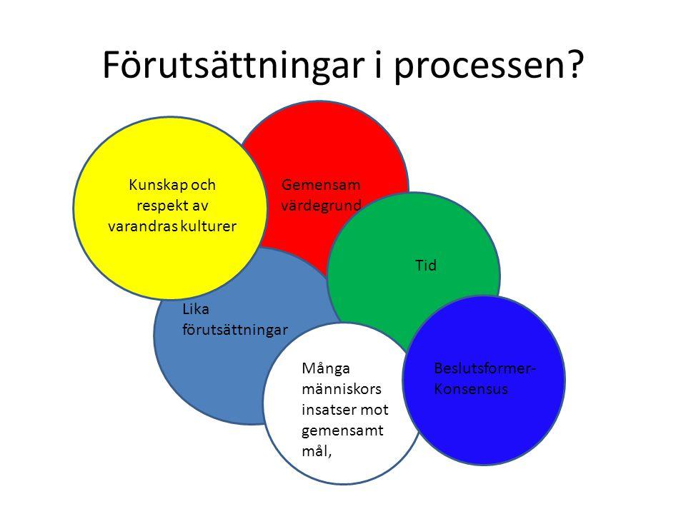 Förutsättningar i processen.