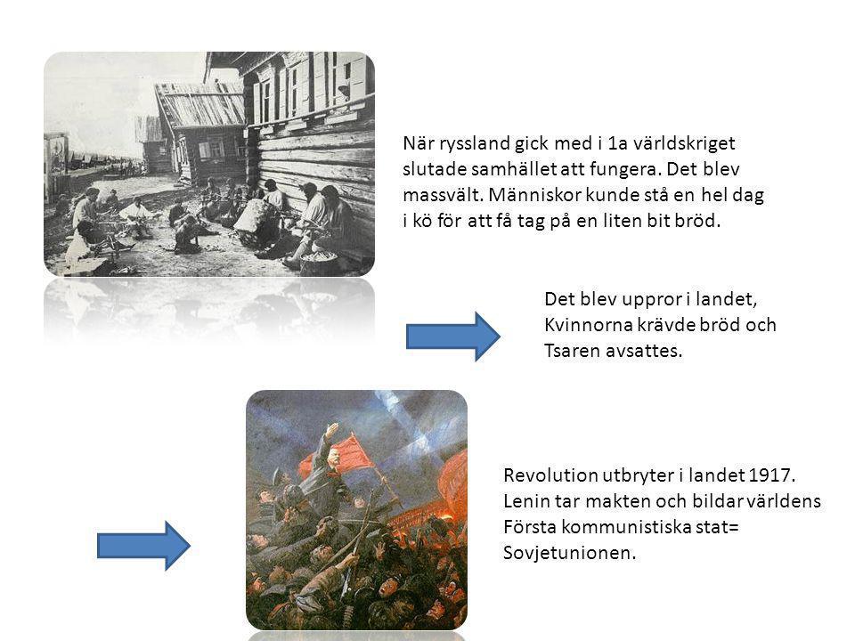 När ryssland gick med i 1a världskriget slutade samhället att fungera. Det blev massvält. Människor kunde stå en hel dag i kö för att få tag på en lit
