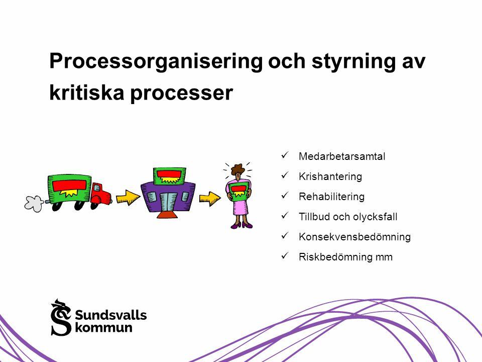Processorganisering och styrning av kritiska processer  Medarbetarsamtal  Krishantering  Rehabilitering  Tillbud och olycksfall  Konsekvensbedömn