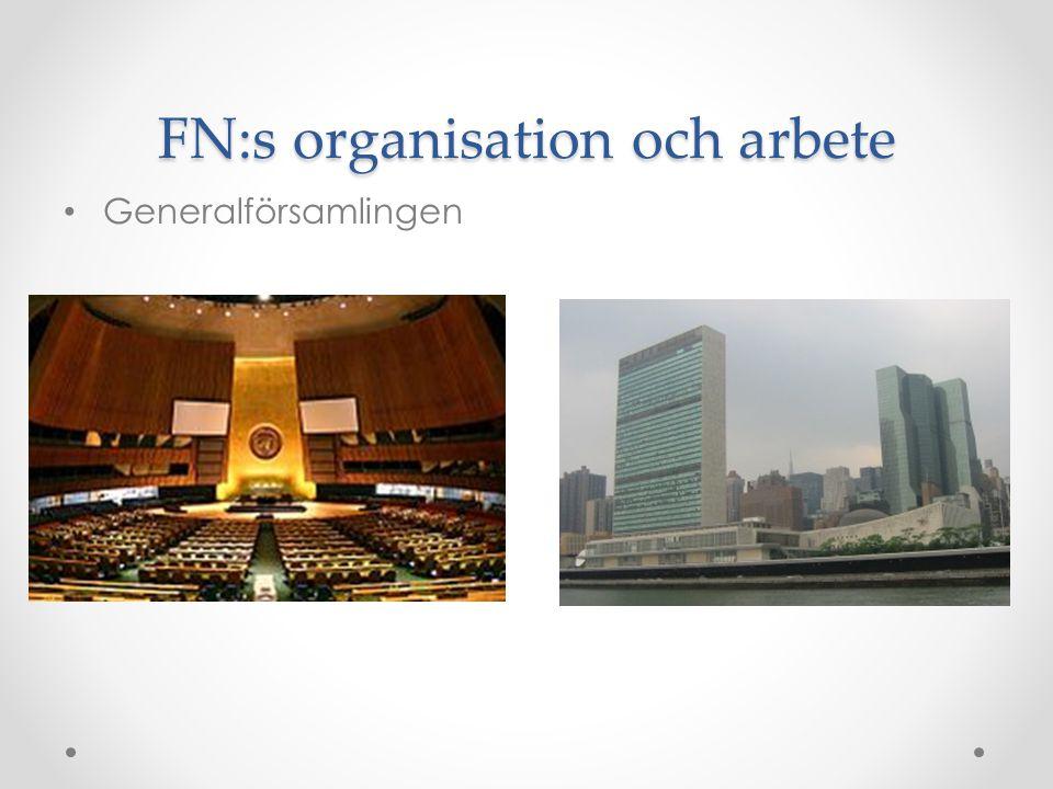 FN:s organisation och arbete • Generalförsamlingen