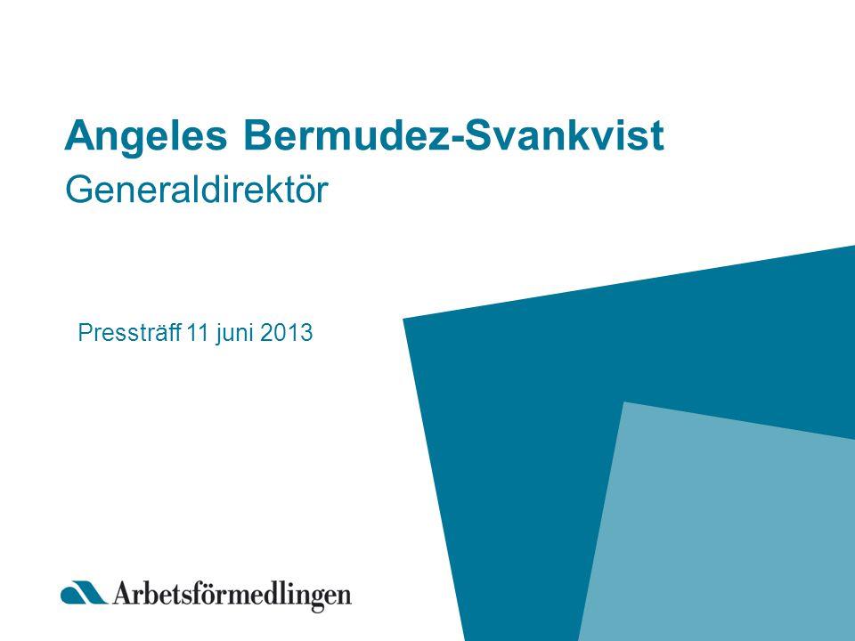 Angeles Bermudez-Svankvist Generaldirektör Pressträff 11 juni 2013