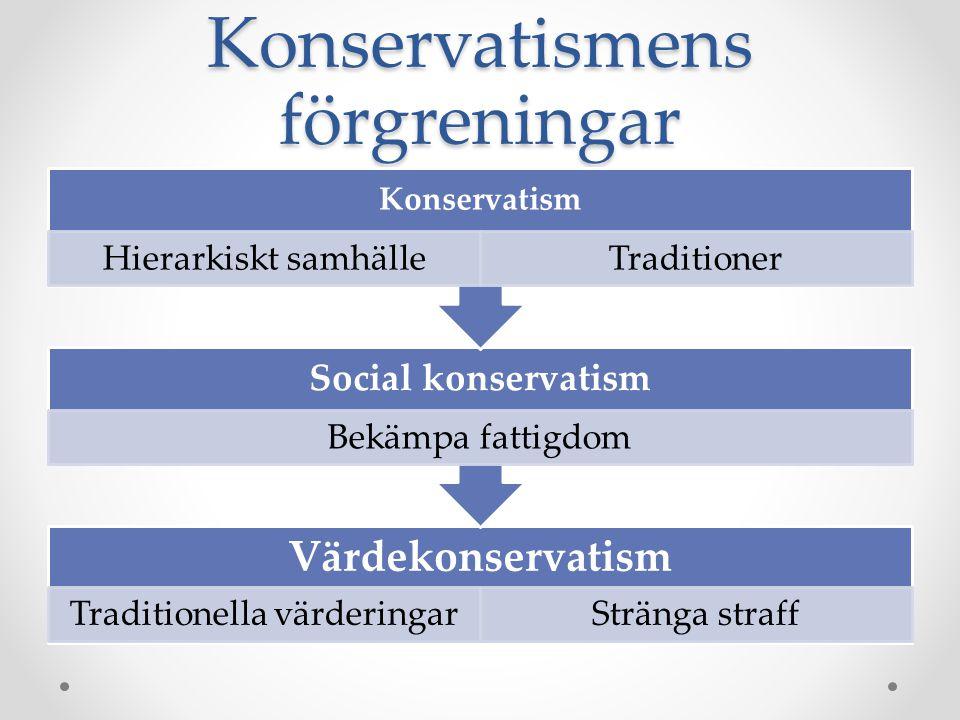Konservatismens förgreningar Värdekonservatism Traditionella värderingarStränga straff Social konservatism Bekämpa fattigdom Konservatism Hierarkiskt samhälleTraditioner