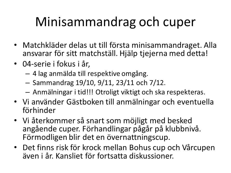 Minisammandrag och cuper • Matchkläder delas ut till första minisammandraget. Alla ansvarar för sitt matchställ. Hjälp tjejerna med detta! • 04-serie