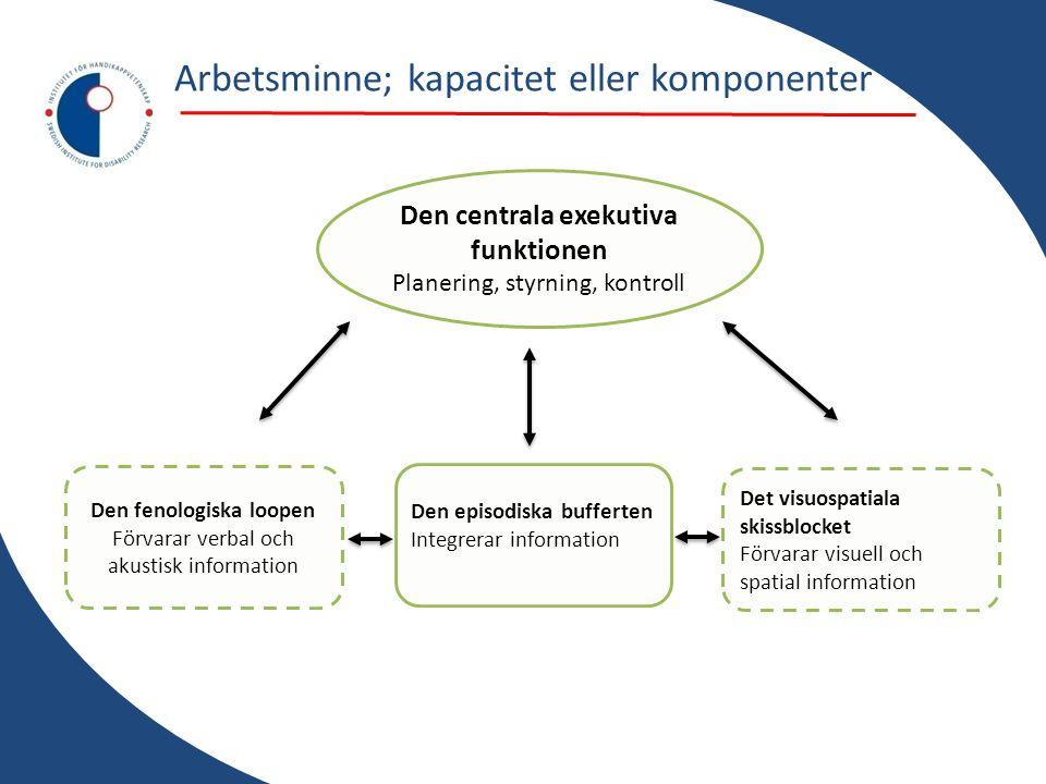 Den centrala exekutiva funktionen Planering, styrning, kontroll Den fenologiska loopen Förvarar verbal och akustisk information Det visuospatiala skis