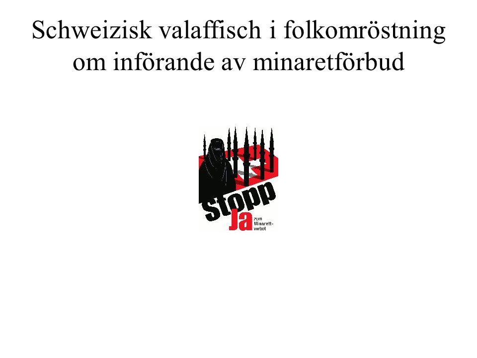 Schweizisk valaffisch i folkomröstning om införande av minaretförbud