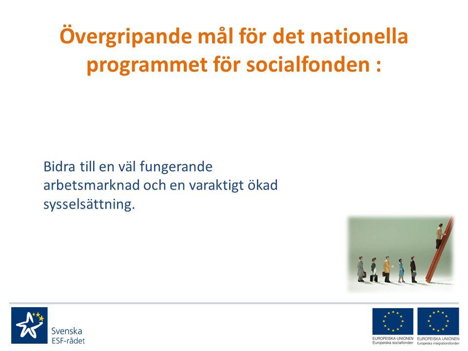 Programområde 2 Utbildning för sysselsatta i handledning/anpassning Lärlingsplatser Fokus på samordnade insatser (samverkan mellan kommun, hälso/sjukvård, Arbetsförmedling, Försäkringskassa, kriminalvård) kring fattigdomsbekämpning Underlätta för idéburna organisationer att söka stöd (hur göra?) Insatser för likabehandling och icke-diskriminering (att jämföra med PO1 2007-2013)