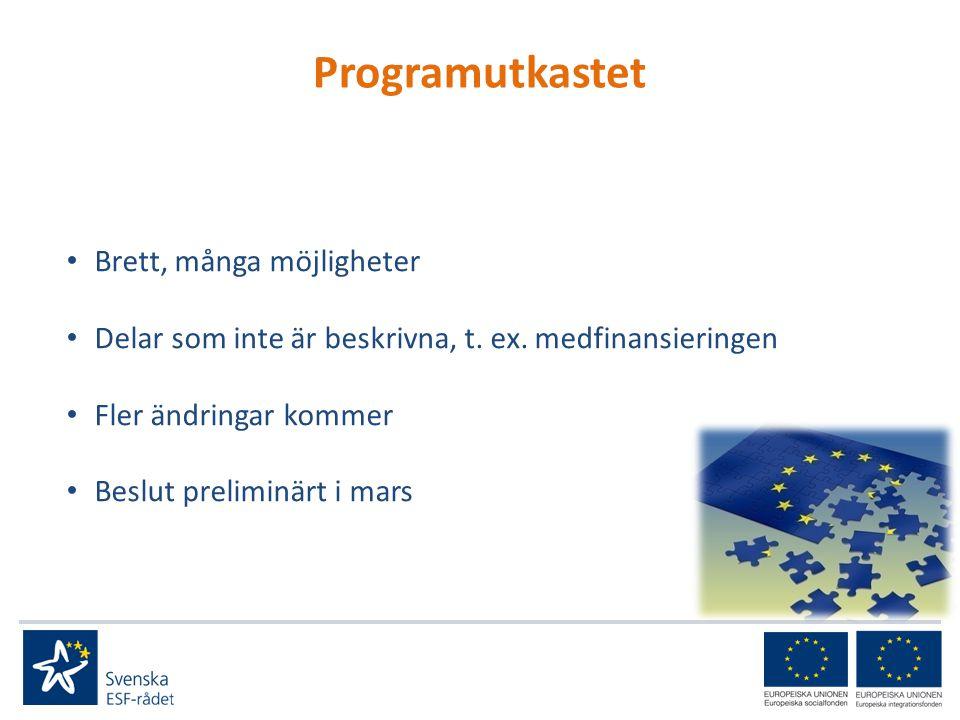 Gemensamma utgångspunkter för programområdena Jämställdhetsintegrering Tillgänglighet för personer med funktionsnedsättning Hållbar utveckling Likabehandling och icke-diskriminering Transnationalitet Finansiera insatser för outvecklade områden som en projektansökare identifierat Arbetssätten/metoderna ska vara kostnads- effektiva, utvärderings- och tillämpningsbara