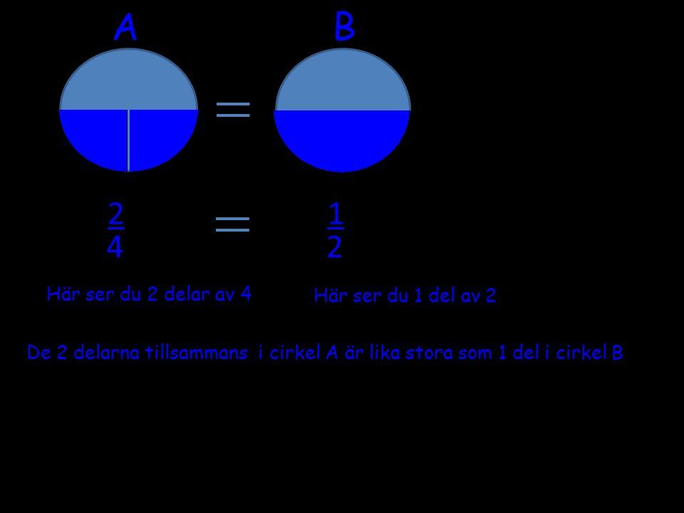Dessa cirklar är delade i fjärdedelar På bilden syns 12 delar..