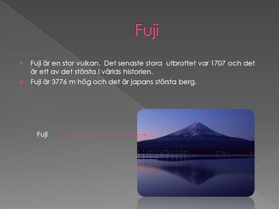 Fuji är en stor vulkan. Det senaste stora utbrottet var 1707 och det är ett av det största i världs historien.  Fuji är 3776 m hög och det är japan
