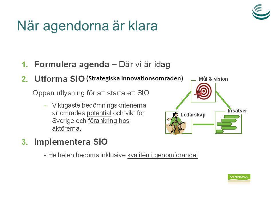 Strategiska innovationsområden (SIO)