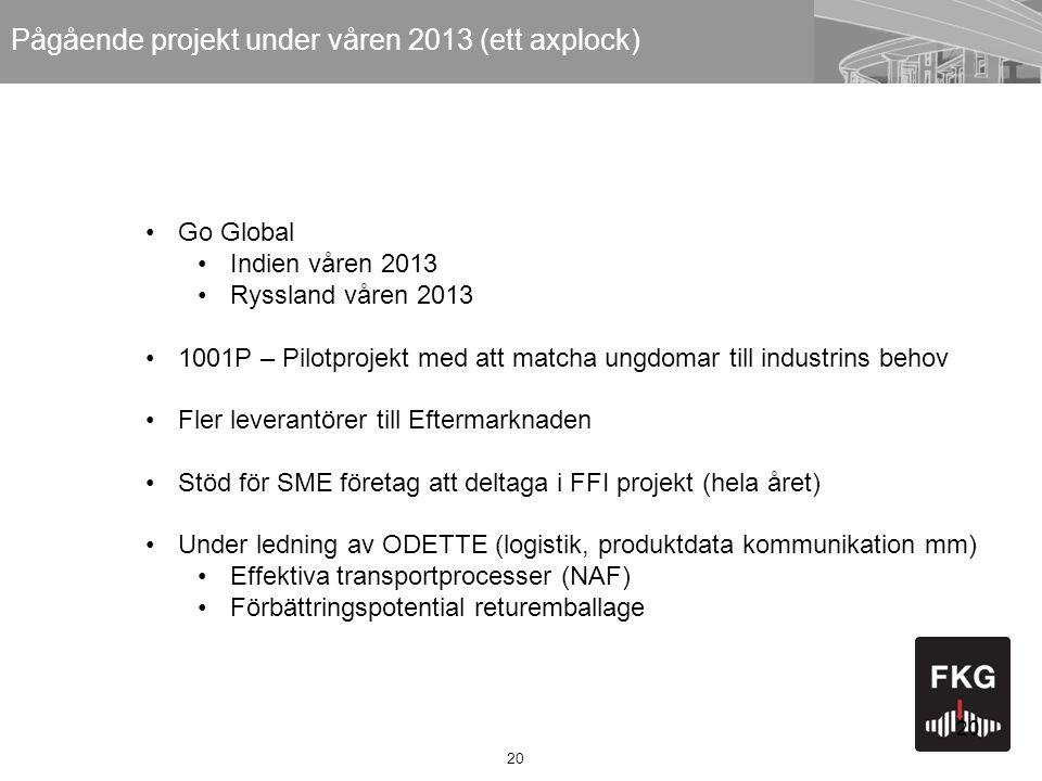 20 Pågående projekt under våren 2013 (ett axplock) •Go Global •Indien våren 2013 •Ryssland våren 2013 •1001P – Pilotprojekt med att matcha ungdomar ti