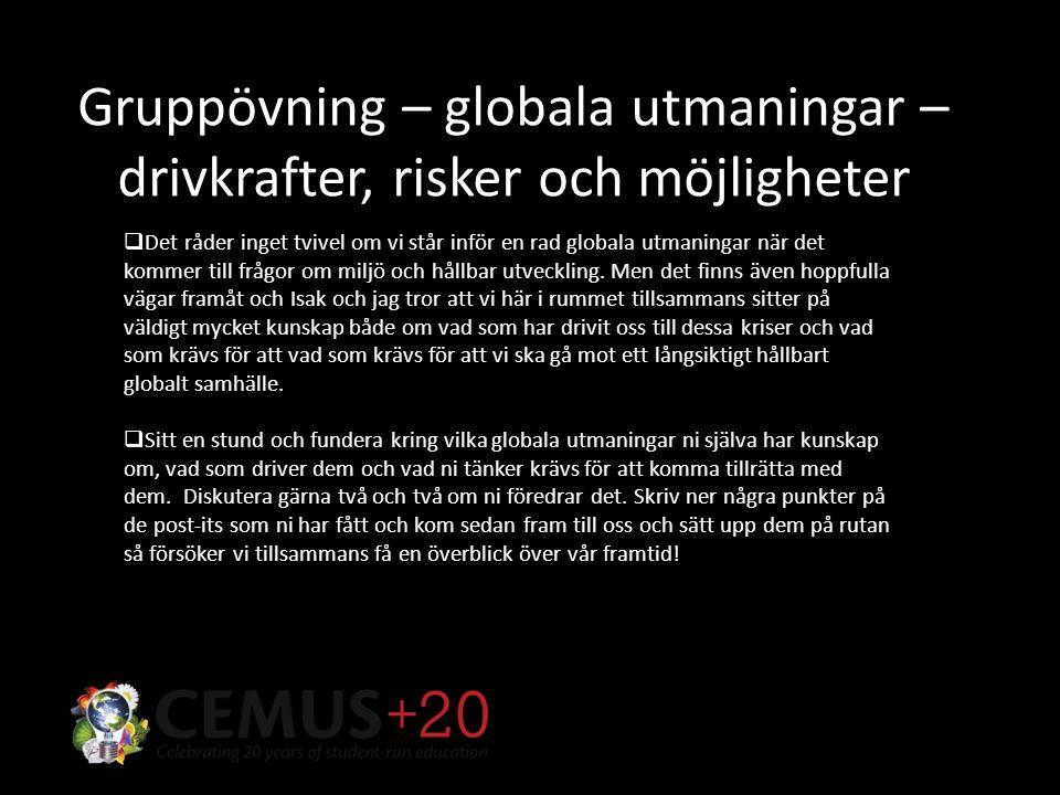 Gruppövning – globala utmaningar – drivkrafter, risker och möjligheter  Det råder inget tvivel om vi står inför en rad globala utmaningar när det kommer till frågor om miljö och hållbar utveckling.