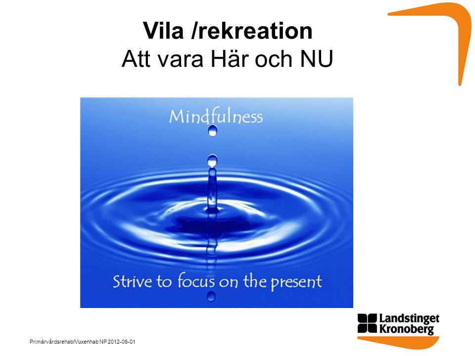 Vila /rekreation Att vara Här och NU Primärvårdsrehab/Vuxenhab NP 2012-06-01