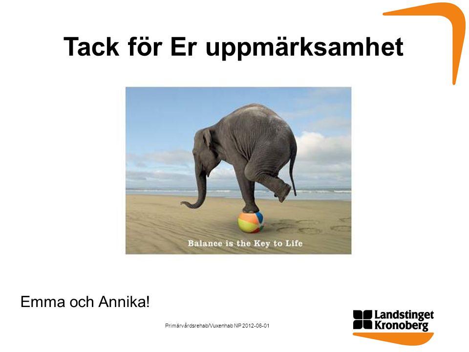 Tack för Er uppmärksamhet Emma och Annika! Primärvårdsrehab/Vuxenhab NP 2012-06-01