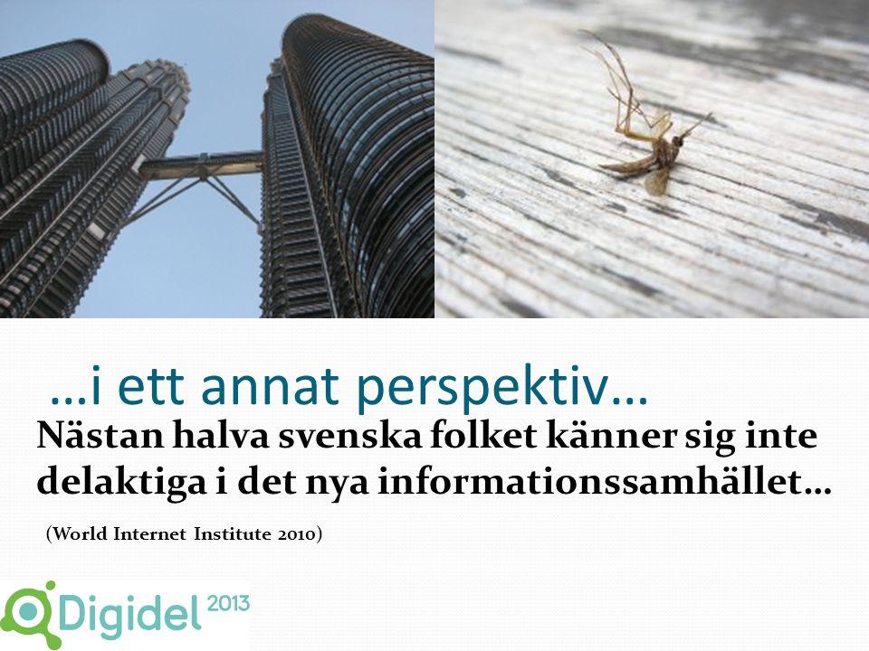 …i ett annat perspektiv… Nästan halva svenska folket känner sig inte delaktiga i det nya informationssamhället… (World Internet Institute 2010)