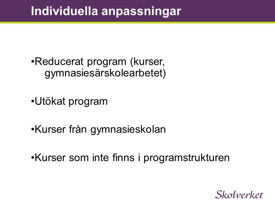 •Reducerat program (kurser, gymnasiesärskolearbetet) •Utökat program •Kurser från gymnasieskolan •Kurser som inte finns i programstrukturen Individuel