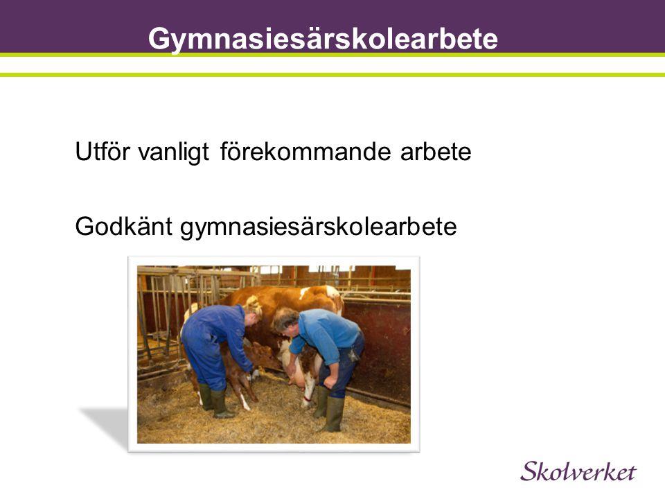 Gymnasiesärskolearbete Utför vanligt förekommande arbete Godkänt gymnasiesärskolearbete