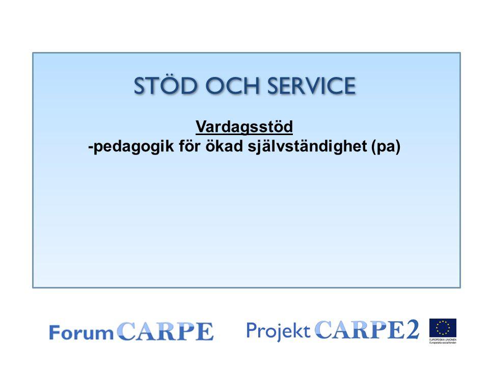 Projekt STÖD OCH SERVICE Vardagsstöd -pedagogik för ökad självständighet (pa)