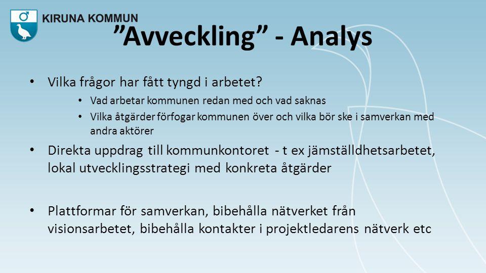 Avveckling - Analys • Vilka frågor har fått tyngd i arbetet.