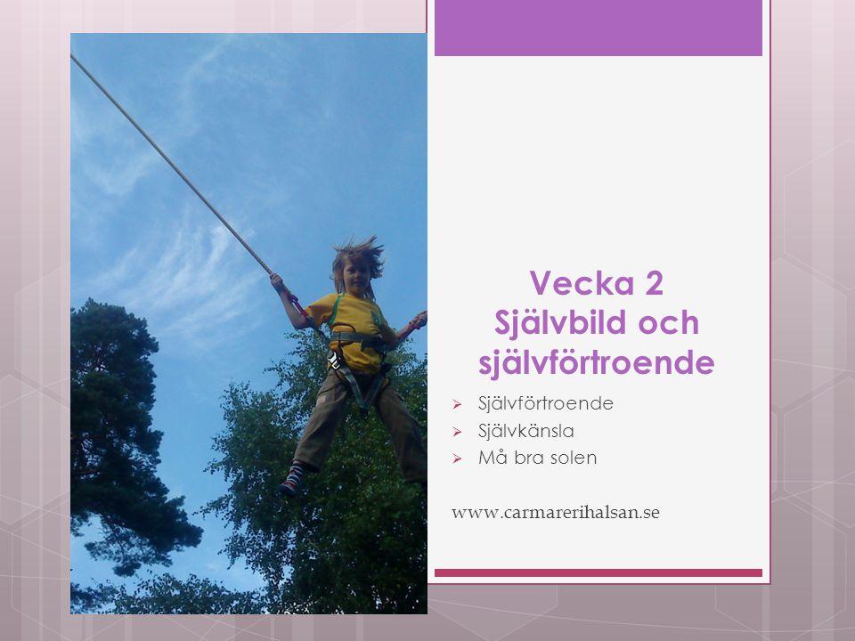 Vecka 2 Självbild och självförtroende  Självförtroende  Självkänsla  Må bra solen www.carmarerihalsan.se