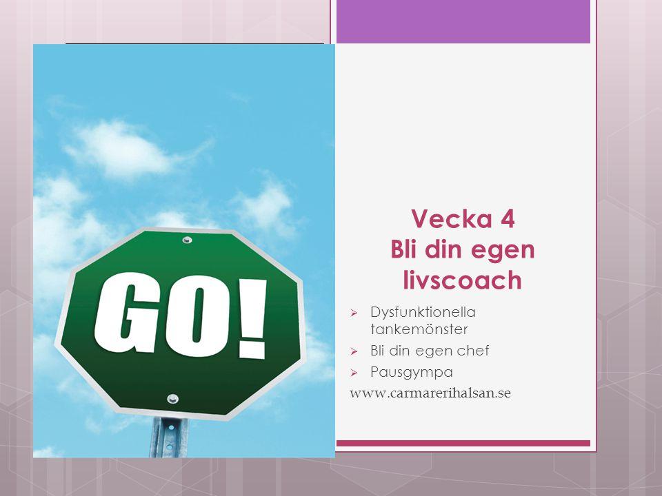 Vecka 10 Framtiden  Målbilder  Tidsplaner  Möt ditt framtids jag  Uppmuntranskarusellen  Ta bort stödhjulen www.carmarerihalsan.se