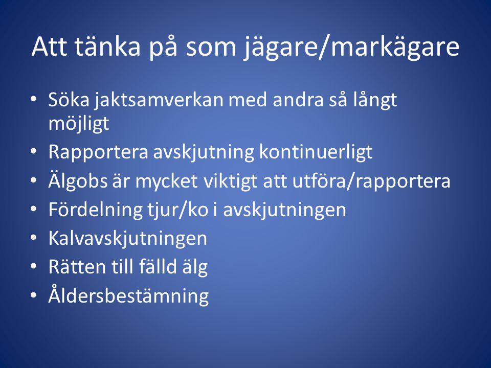 Ram-avskjutning Norrbotten 2012 • Ramtilld.Avskjutn.