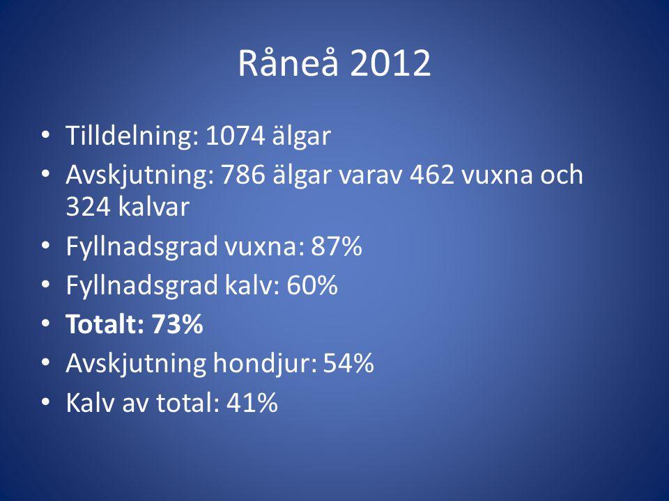 Råneå 2012 • Tilldelning: 1074 älgar • Avskjutning: 786 älgar varav 462 vuxna och 324 kalvar • Fyllnadsgrad vuxna: 87% • Fyllnadsgrad kalv: 60% • Tota