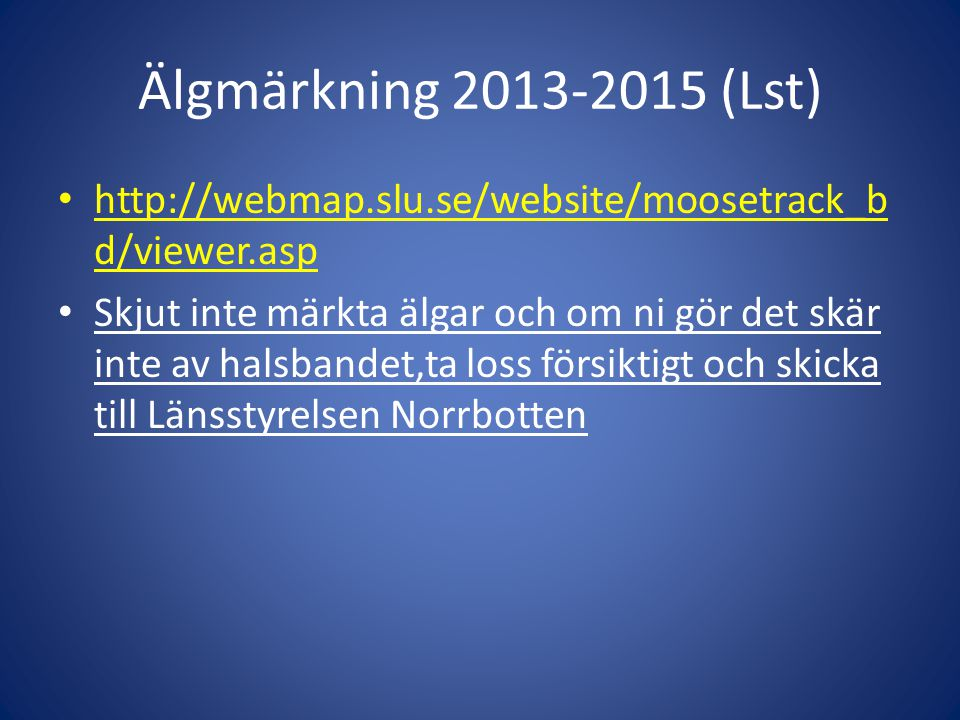 Älgmärkning 2013-2015 (Lst) • http://webmap.slu.se/website/moosetrack_b d/viewer.asp • Skjut inte märkta älgar och om ni gör det skär inte av halsband