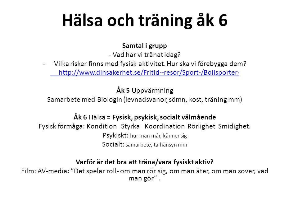 Hälsa och träning åk 6 Samtal i grupp - Vad har vi tränat idag? -Vilka risker finns med fysisk aktivitet. Hur ska vi förebygga dem? http://www.dinsake
