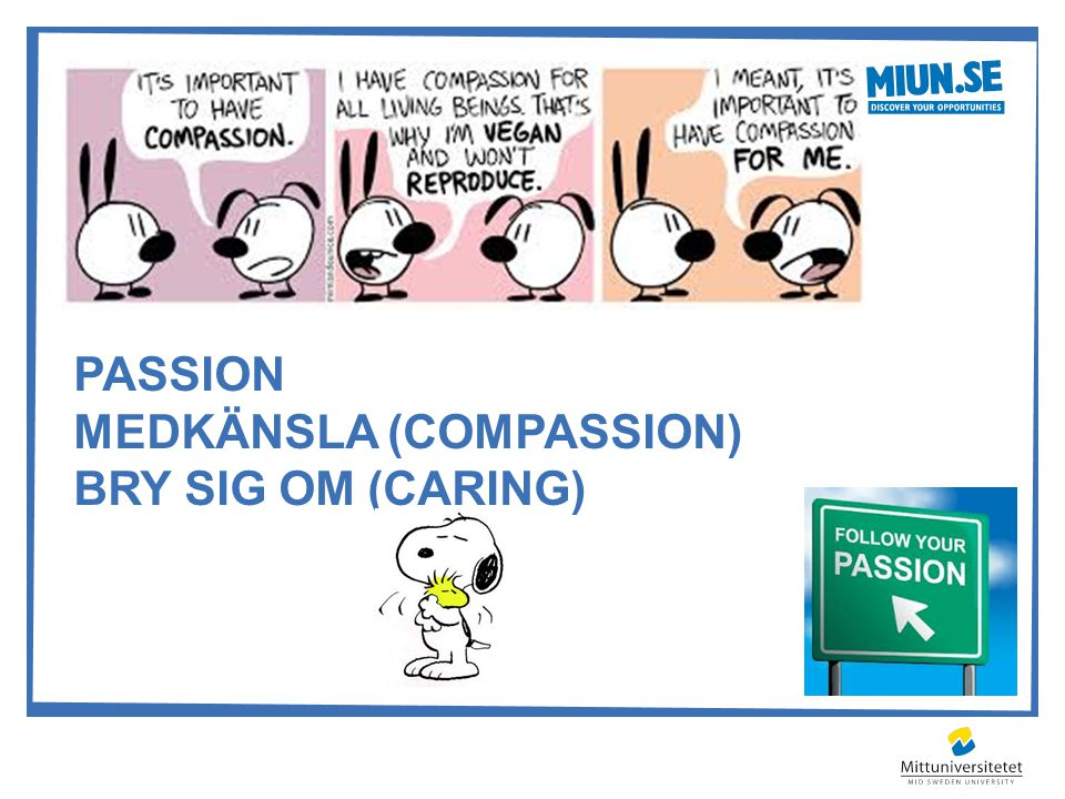 PASSION MEDKÄNSLA (COMPASSION) BRY SIG OM (CARING)