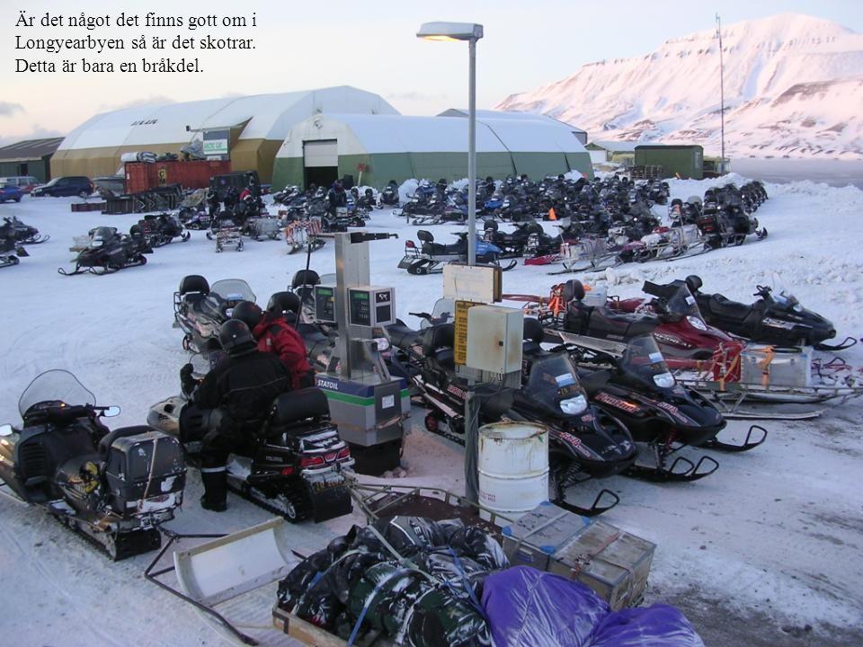 Är det något det finns gott om i Longyearbyen så är det skotrar. Detta är bara en bråkdel.