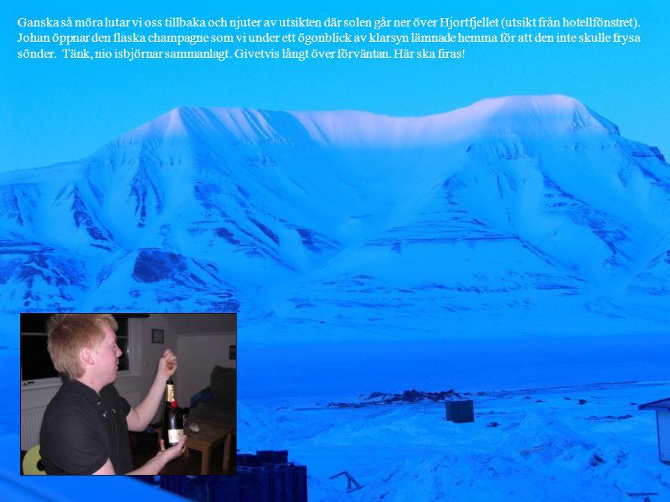 Ganska så möra lutar vi oss tillbaka och njuter av utsikten där solen går ner över Hjortfjellet (utsikt från hotellfönstret). Johan öppnar den flaska