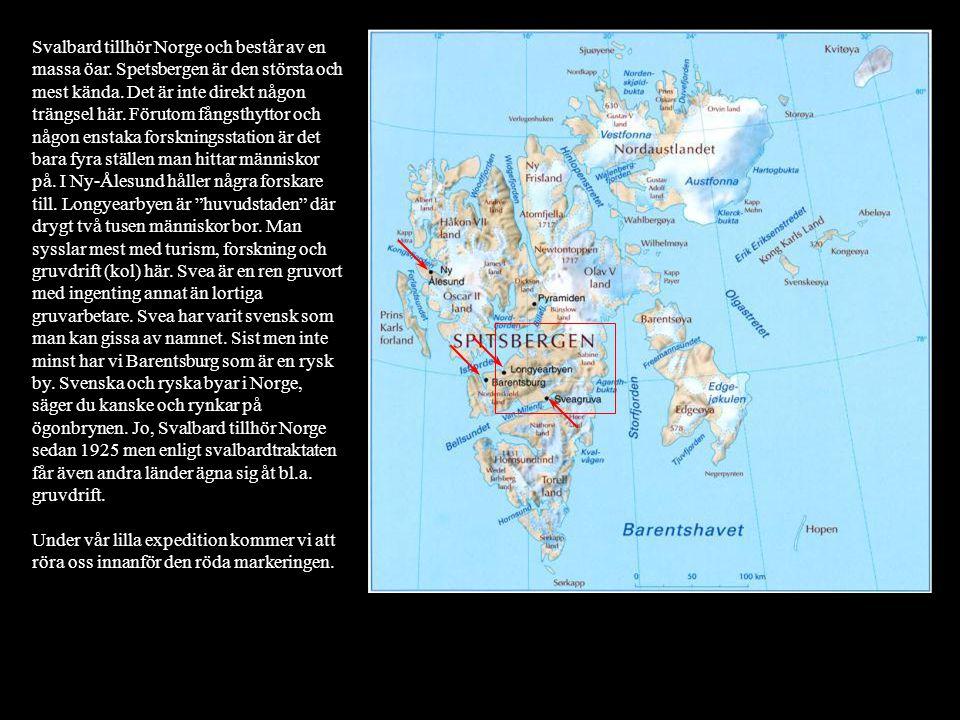 Svalbard tillhör Norge och består av en massa öar. Spetsbergen är den största och mest kända. Det är inte direkt någon trängsel här. Förutom fångsthyt