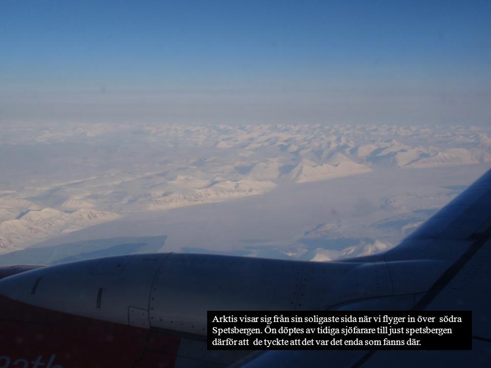 Arktis visar sig från sin soligaste sida när vi flyger in över södra Spetsbergen. Ön döptes av tidiga sjöfarare till just spetsbergen därför att de ty