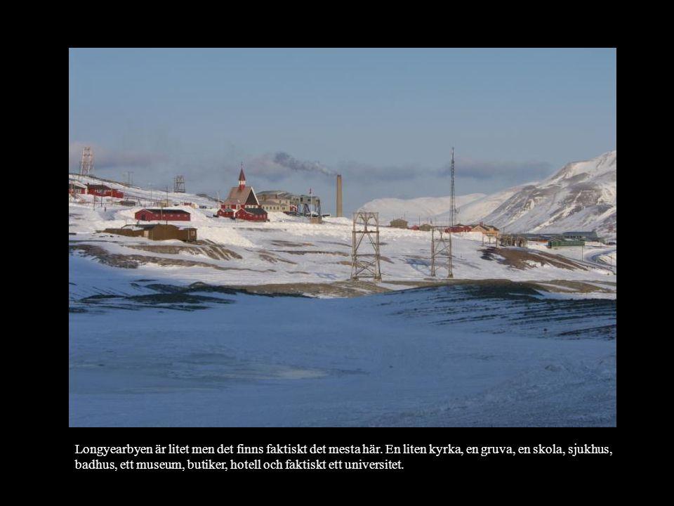 Longyearbyen är litet men det finns faktiskt det mesta här. En liten kyrka, en gruva, en skola, sjukhus, badhus, ett museum, butiker, hotell och fakti