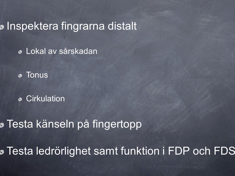 Inspektera fingrarna distalt Lokal av sårskadan Tonus Cirkulation Testa känseln på fingertopp Testa ledrörlighet samt funktion i FDP och FDS