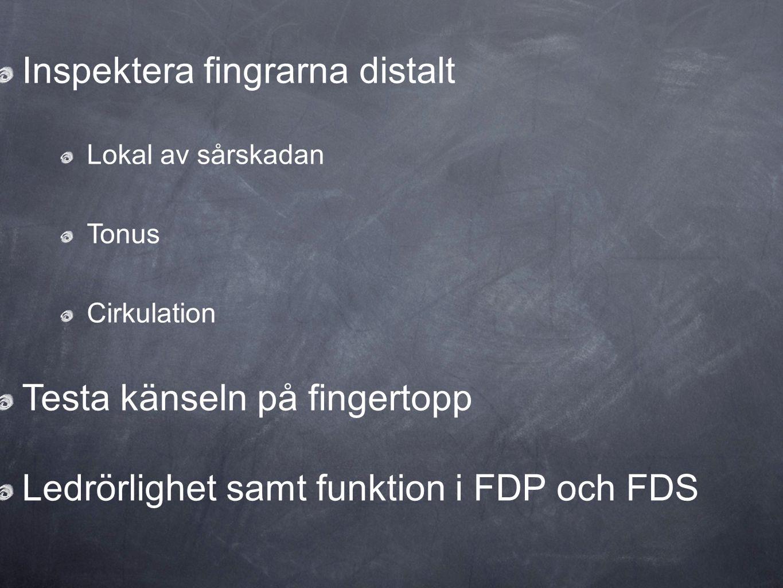 Inspektera fingrarna distalt Lokal av sårskadan Tonus Cirkulation Testa känseln på fingertopp Ledrörlighet samt funktion i FDP och FDS