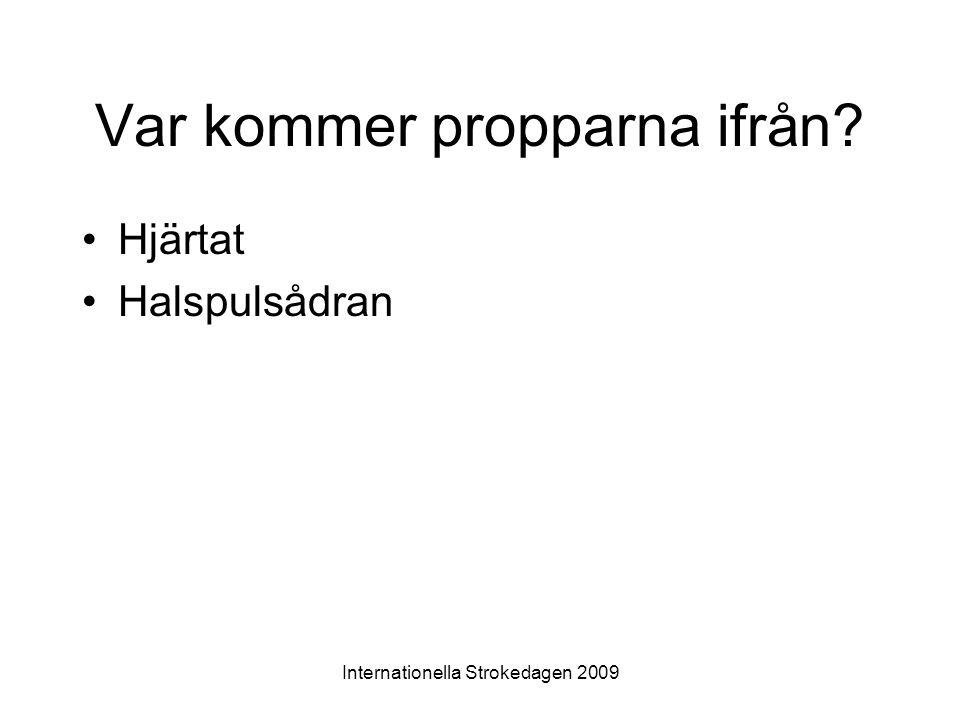 Internationella Strokedagen 2009 Var kommer propparna ifrån? •Hjärtat •Halspulsådran