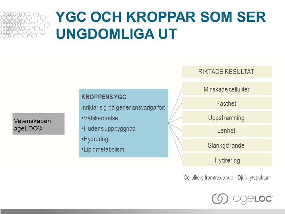 YGC OCH KROPPAR SOM SER UNGDOMLIGA UT Vetenskapen ageLOC® KROPPENS YGC Inriktar sig på gener ansvariga för: • Vätskerörelse • Hudens uppbyggnad • Hydr