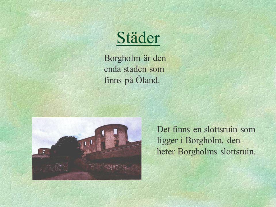 Borgholm är den enda staden som finns på Öland.