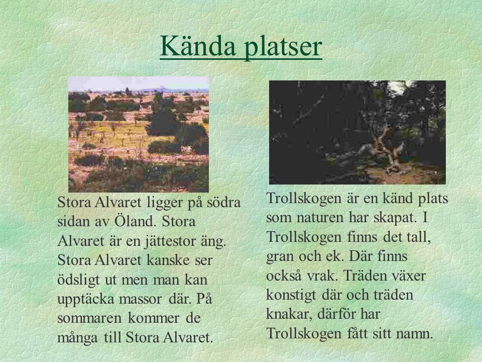 Kända platser Trollskogen är en känd plats som naturen har skapat.